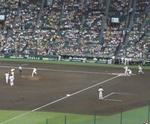 090712_甲子園のネコ科.jpg