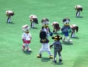 090613_クールが阪神の帽子を.jpg