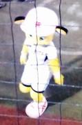 090922_ラッキーちゃん謝罪.jpg