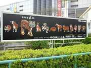 100328_甲子園 (3).JPG