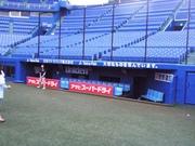 20100627_神宮 三塁側ベンチ.jpg