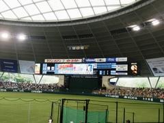 20110612_西武ドームバックスクリーン側.jpg