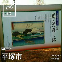 2014-01-20_馬入 (3).jpg
