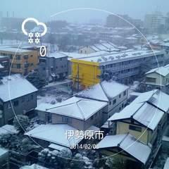 2014-02-08(雪) (1).jpg