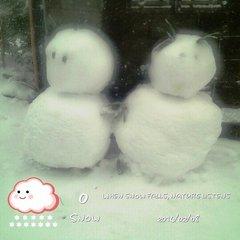 2014-02-08(雪) (9).jpg