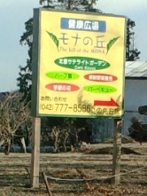 2014-03-10 (15)モナの丘.jpg