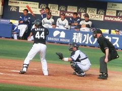 2014-04-27_梅野プロ初HR.jpg