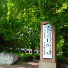 2014-05-06_J2第12節:湘南2−1栃木(BMWス) (12).jpg