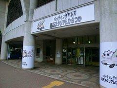 20140713_高校野球神奈川大会(平塚) (11).jpg