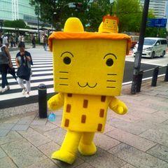 20140816_はこねこ (2).jpg