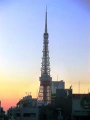 ゆりかもめから東京タワー.jpg