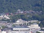 京都タワーから清水寺2.jpg