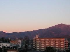 大山と富士.jpg