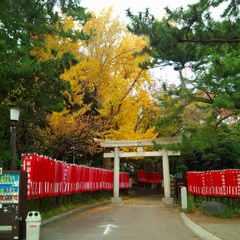 平塚八幡宮 (2).jpg