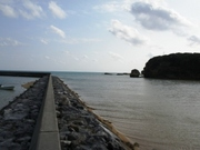 辺野古4.jpg