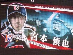 miyamotoshinya.jpg